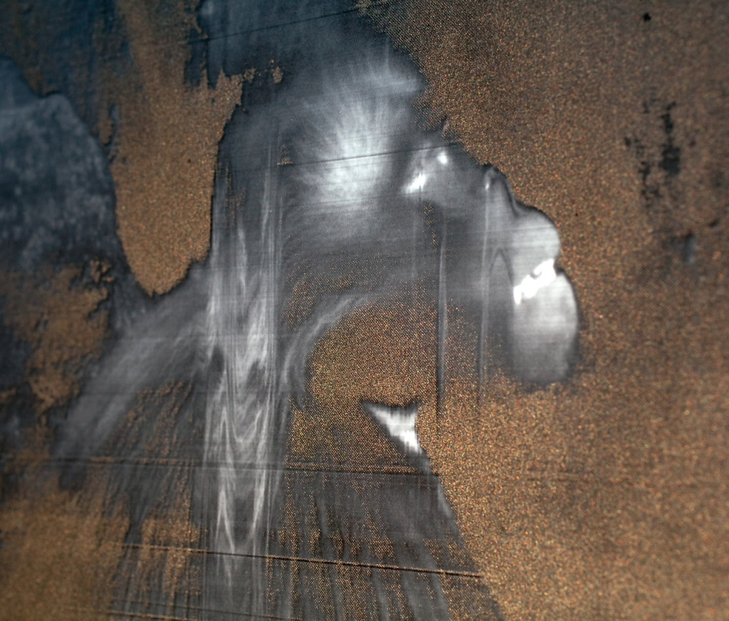 Primates(detail)