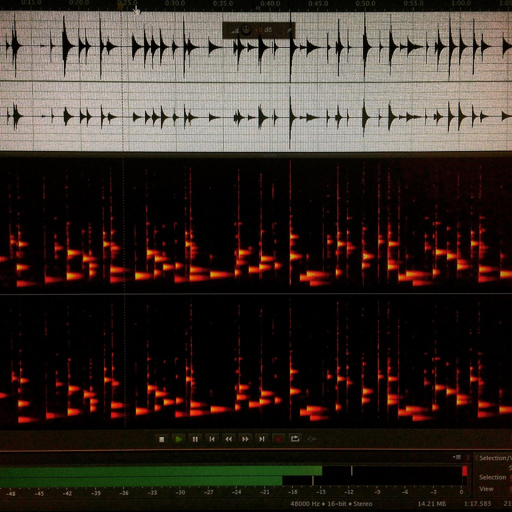 Audio Screenshot