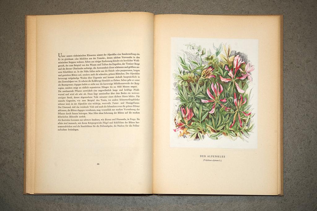 Book-02872.jpg