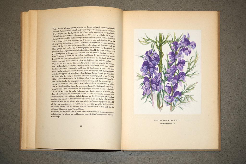 Book-02880.jpg