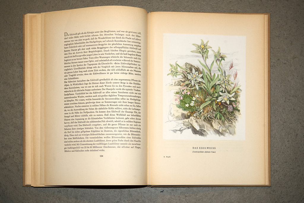 Book-02892.jpg